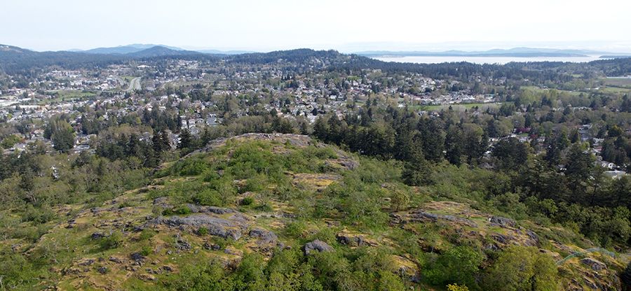 Drone image of Christmas Hill, Victoria, BC