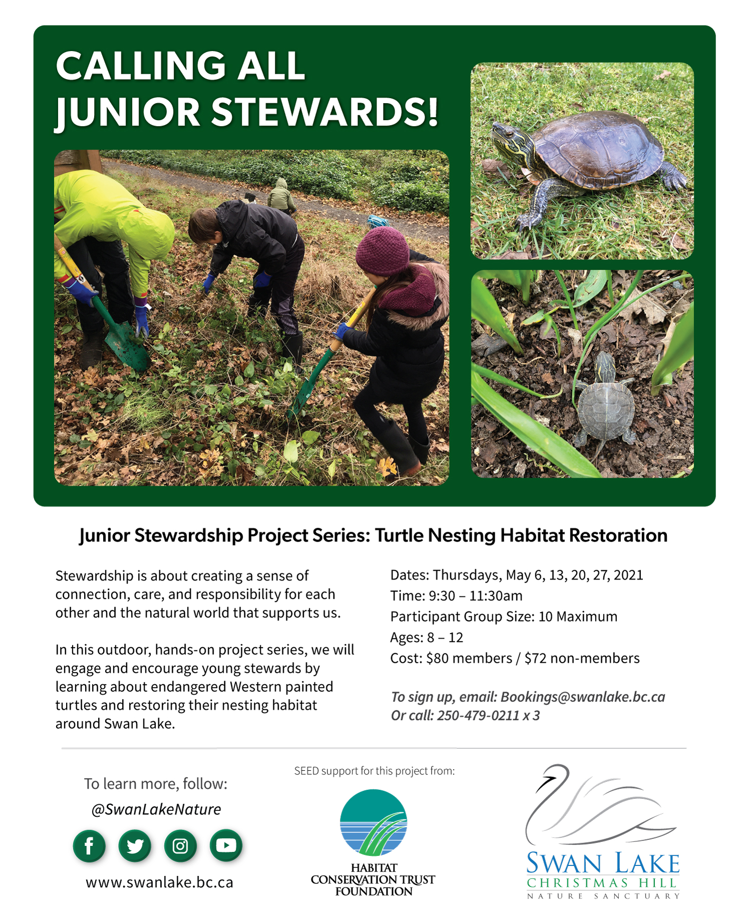 Flyer for Junior Stewardship Series showing children working outside and Western Painted Turtles
